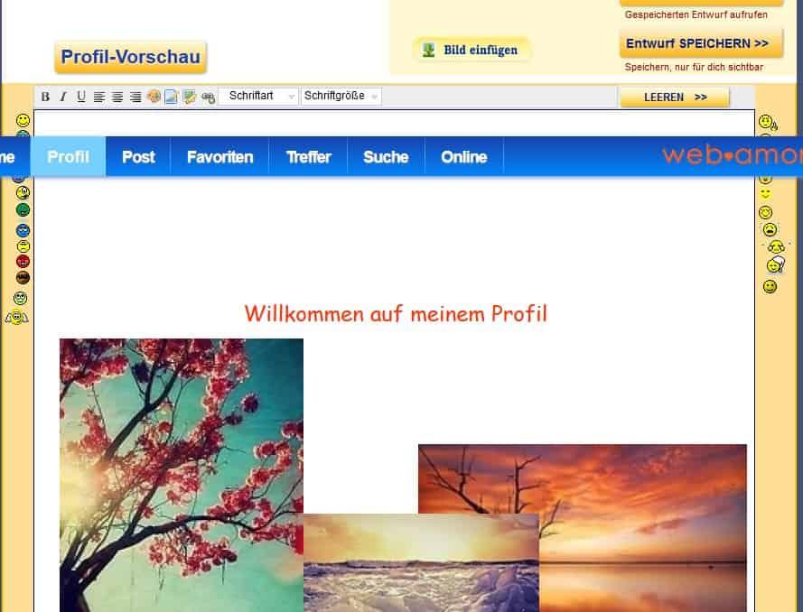 Profilvorschau auf Web-Amor.de