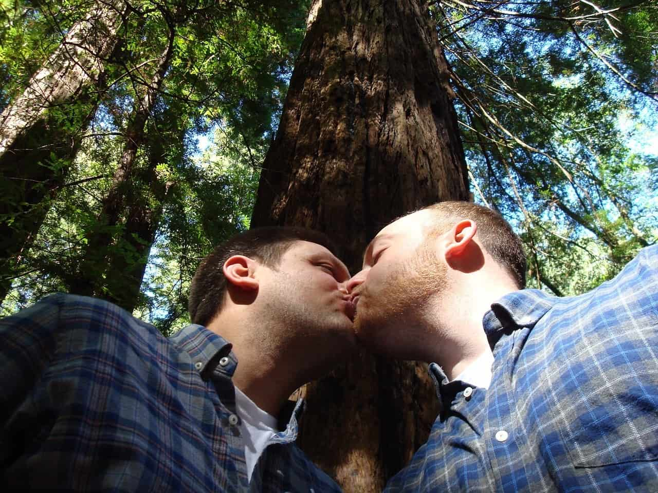 Gay Dating Seiten