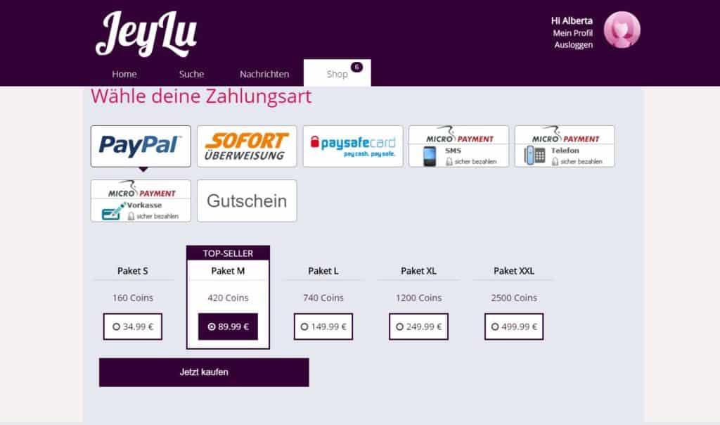 Testbericht - jeylu.com Kosten