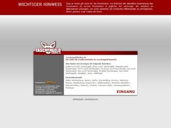 Testbericht: TaschengeldLadies.de Abzocke