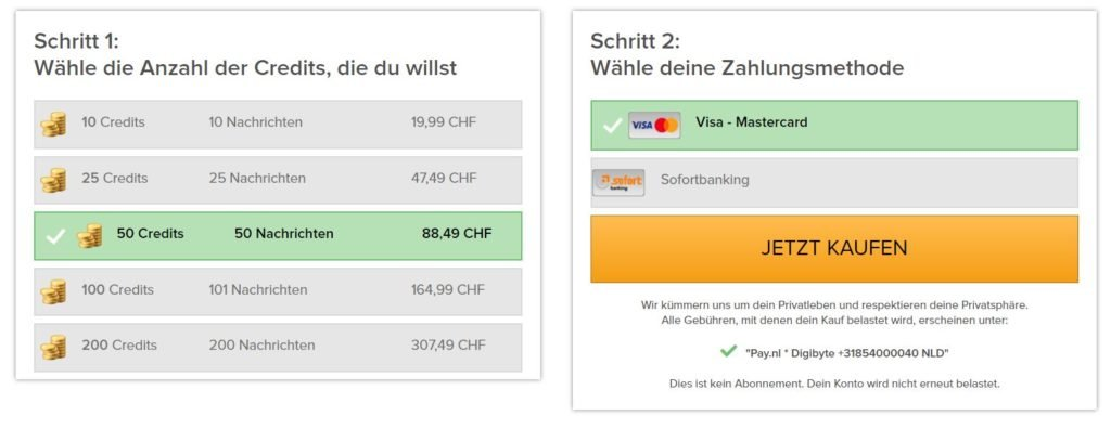 Testbericht - schweizerlust.com Kosten