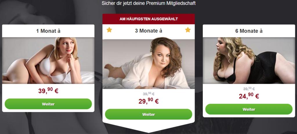 PralleFrauen.com - Kosten