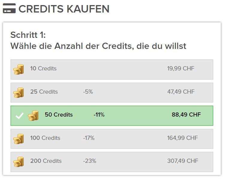 Testbericht - schweizertreff.com Kosten